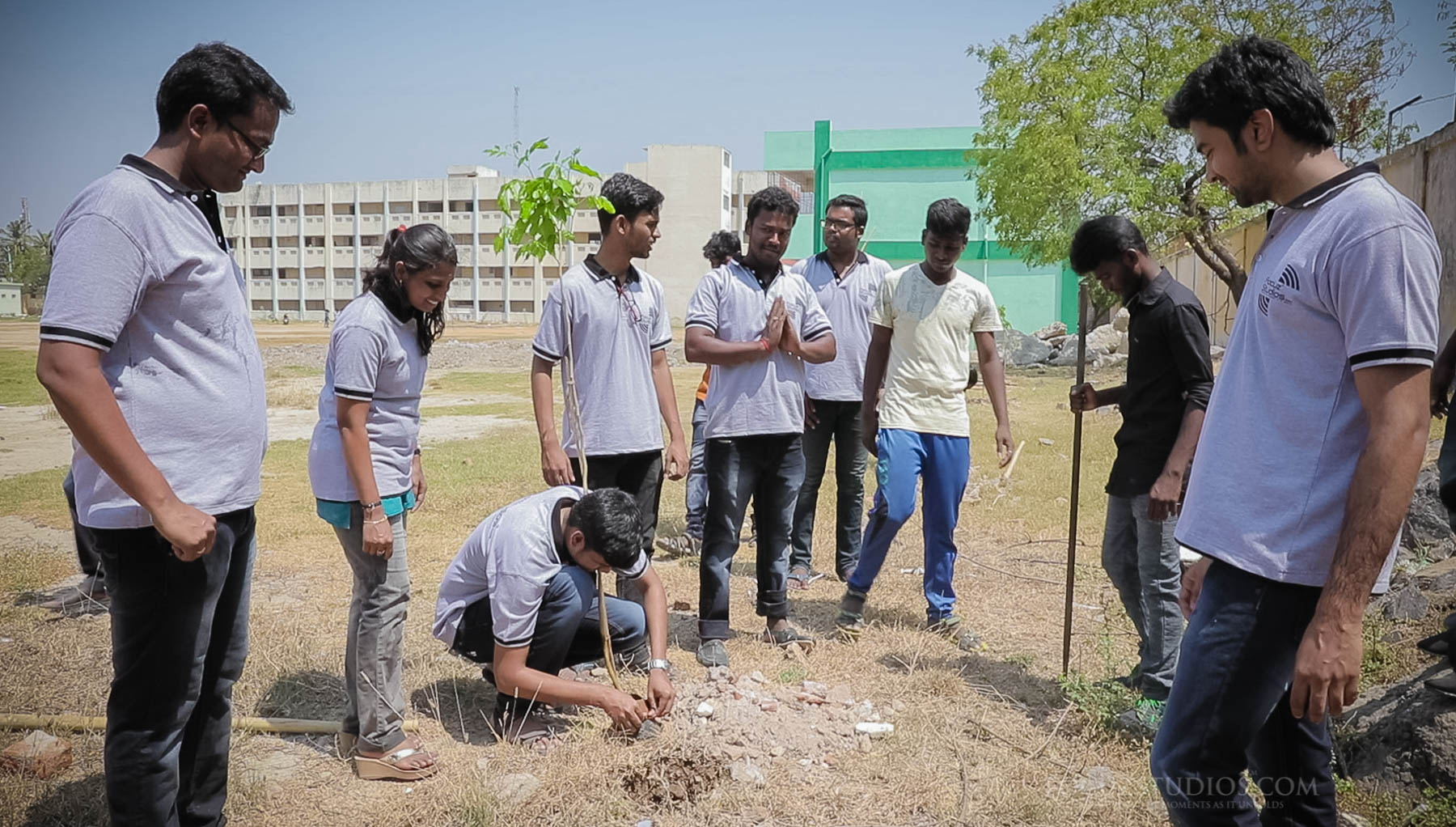 tree plantation programme focuz studios